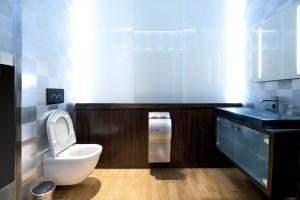 06-alkmaion_toilette